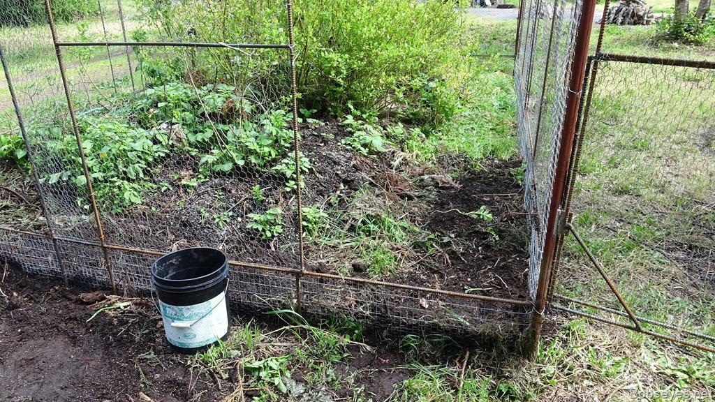 A day shoveling dirt into the garden enclosure bob39s eyes for Garden enclosure