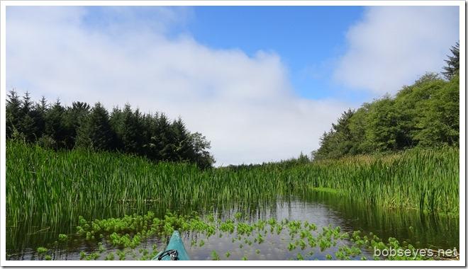 pond7