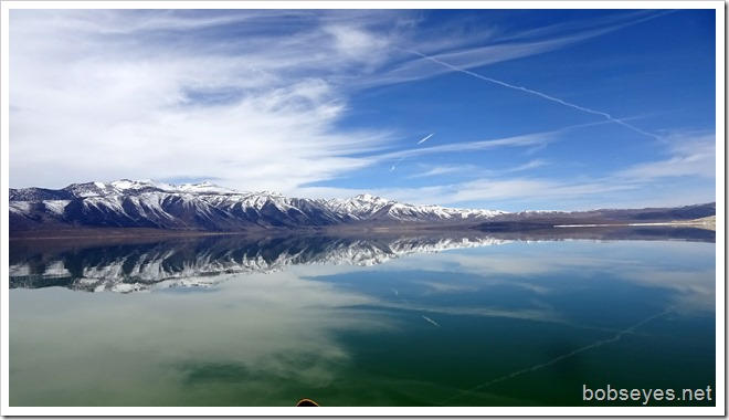 reflects9