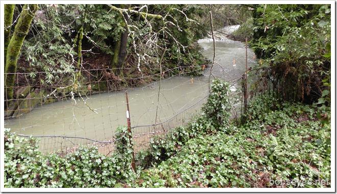 creek10