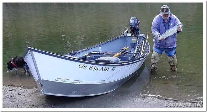 mikefish13