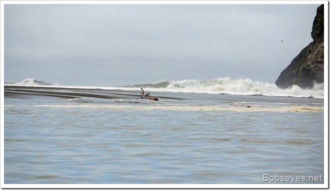 waves8