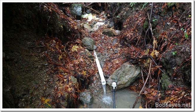 creekspring