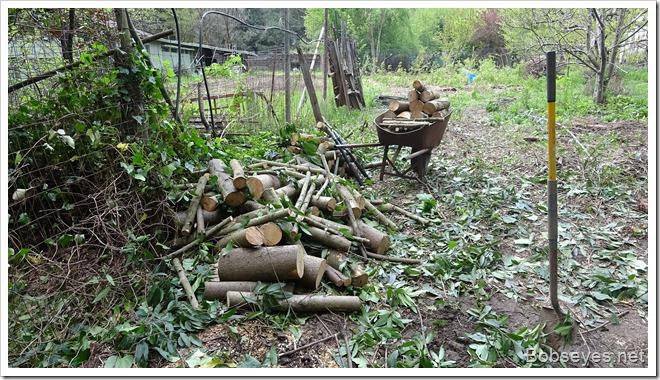 woodpiles