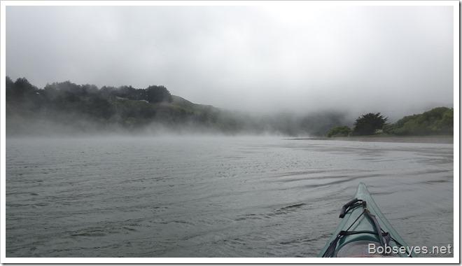 fog21