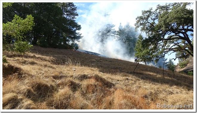 grassfire16