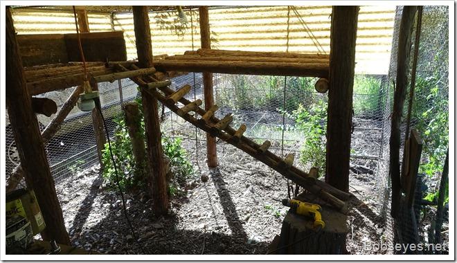ladder8