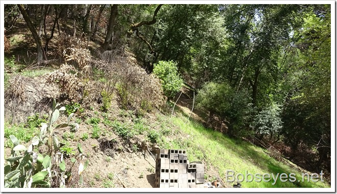 hill4