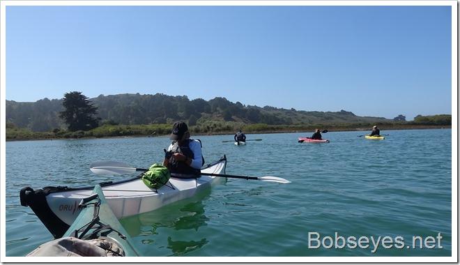 paddling2